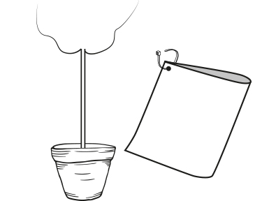 lilla toscana växthotell illustration buntband växt